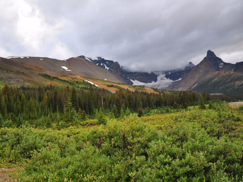 Jasper National Park 國家公園 HelloStudy 溫哥華 楓禾