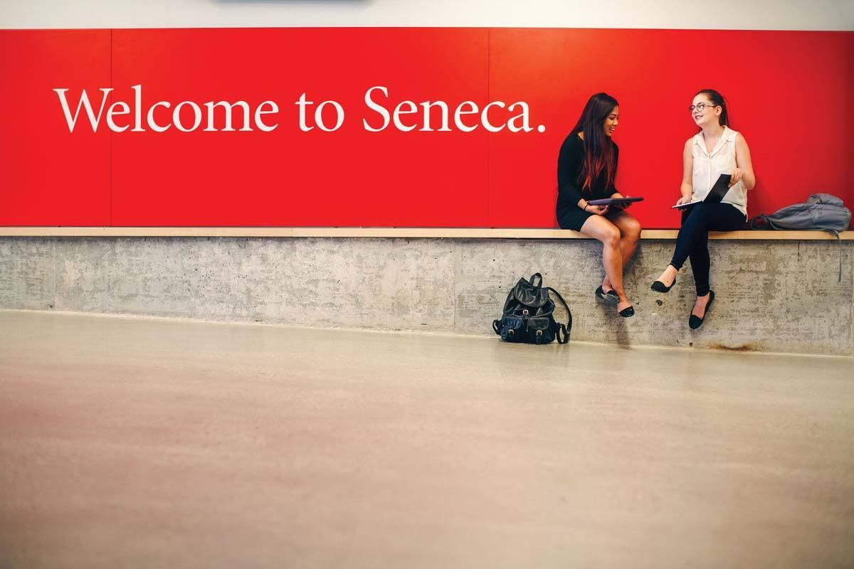 HelloStudy Seneca