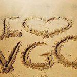 2021-2022 VGC x HelloStudy 專屬優惠